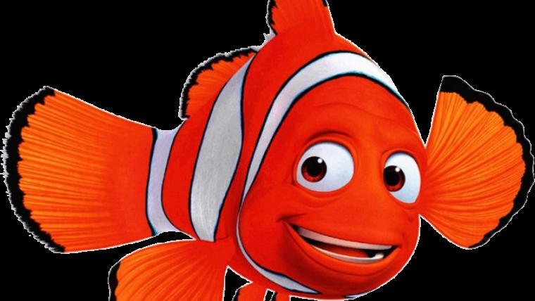 Chương trình học lớp Mầm ( 3 tuổi đến 4 tuổi ) _ Lớp Nemo